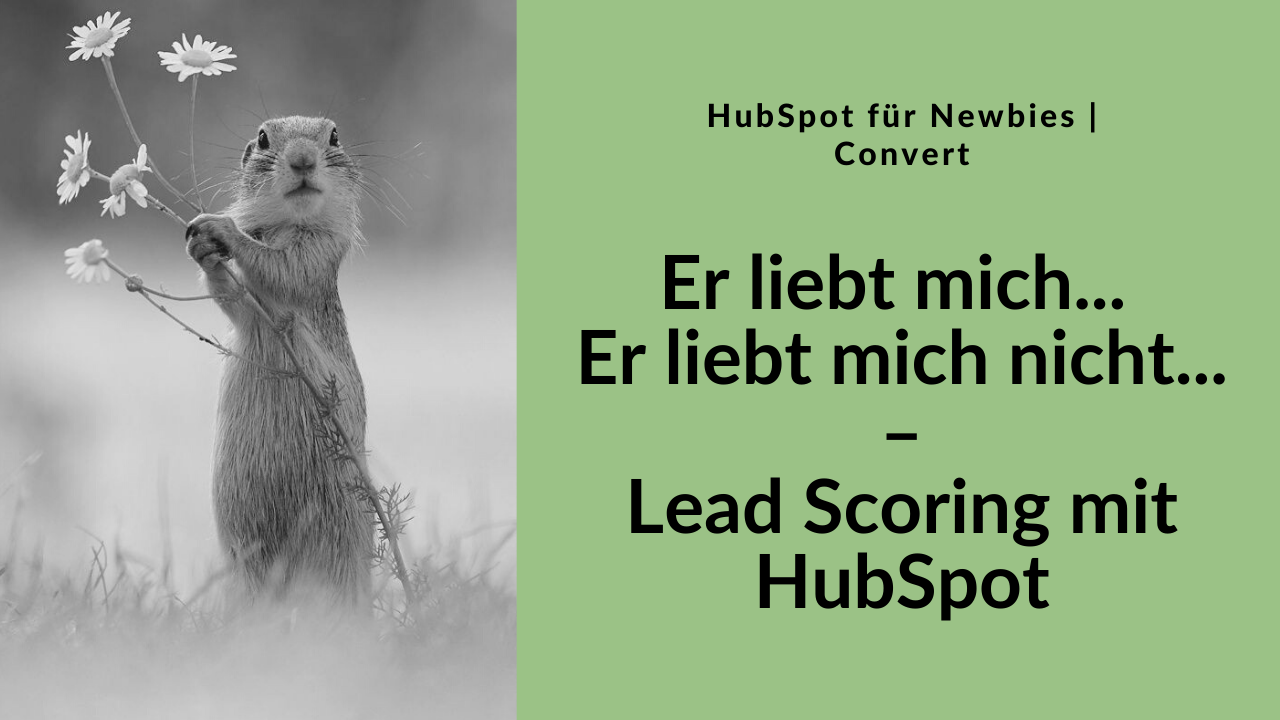 Lesson Cover HubSpot Workout Lead Scoring